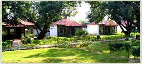 Hotels & Resorts In Corbett