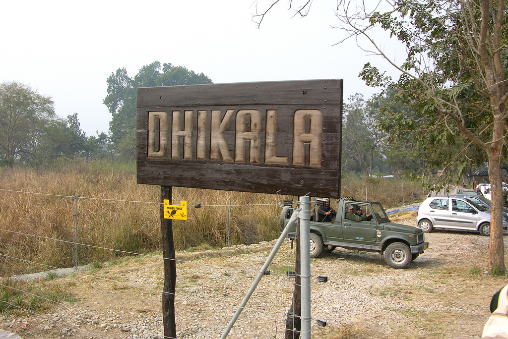 Dhikala Forest
