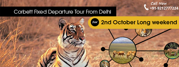 Corbett National Park Fixed Departure Tour