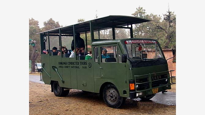 Canter Safari in corbett