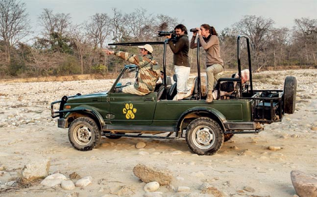 corbett jungle holidays