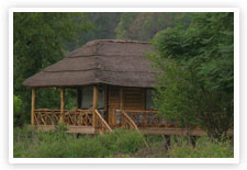 Camp Riverwild Resort, Corbett